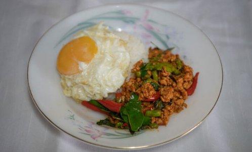 กะเพราเกาหลี&ชาชงมือ-(กะเพราเกาหลีเจ้าแรกในเมืองไทย)--05